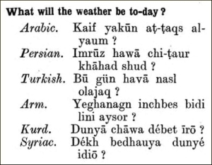 what will the weather