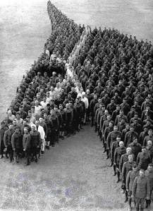 http://historywars.tumblr.com/post/90244136299/war-veterans-tribute-to-war-horses-a-really-nice