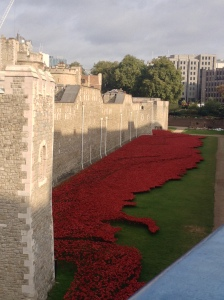 Poppies at the Tower of London, 2014.